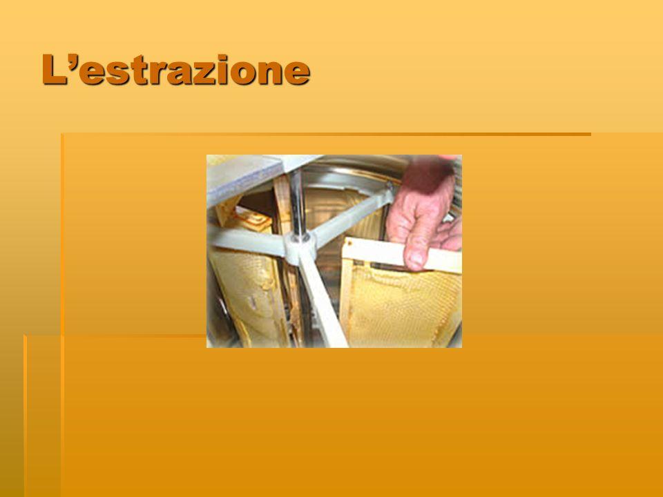 Lestrazione