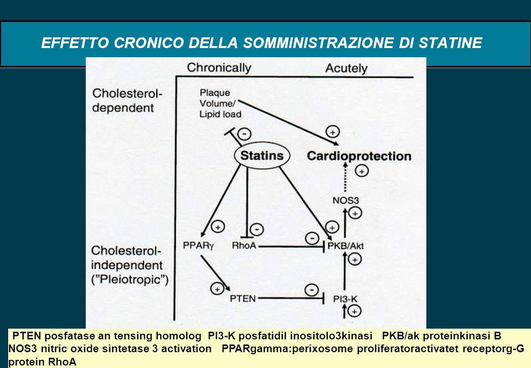 67 EFFETTO CRONICO DELLA SOMMINISTRAZIONE DI STATINE PTEN posfatase an tensing homolog PI3-K posfatidil inositolo3kinasi PKB/ak proteinkinasi B NOS3 n