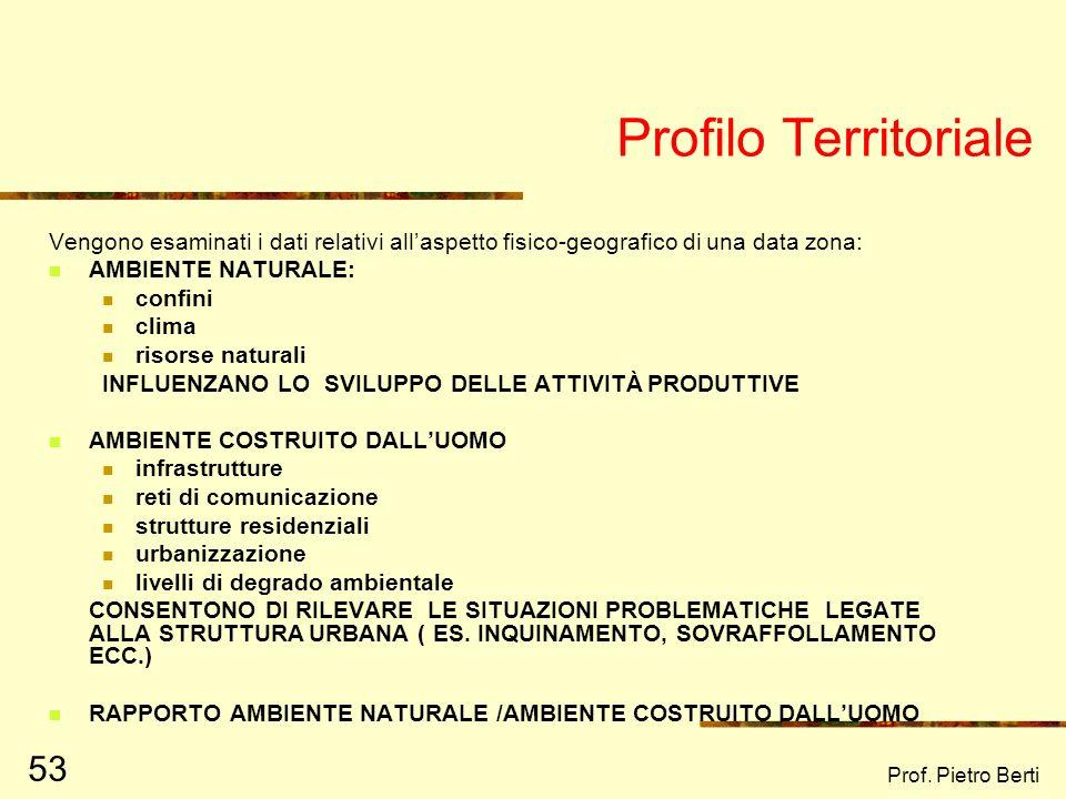 Prof. Pietro Berti 52 Profilo territoriale Profilo demografico Profilo economico Profilo dei servizi Profilo istituzionale Profilo psicosociale Profil