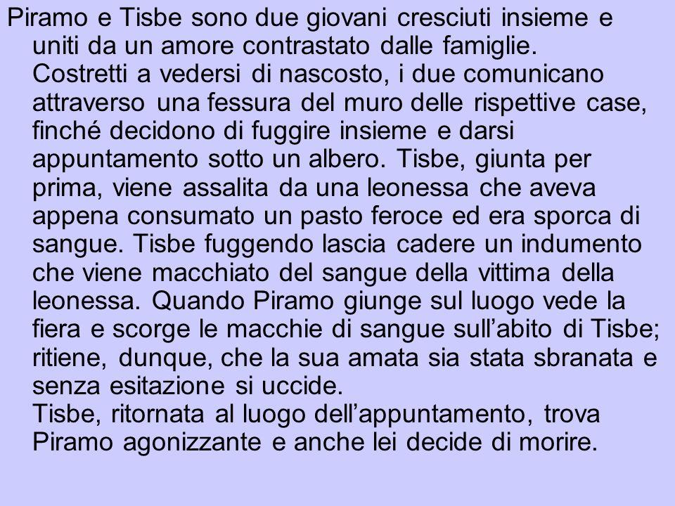 Cesare Segre Il Piramo e Tisbe nei lai di Maria di Francia in Studi in onore di Vittorio Lugli e Diego Valeri, Venezia, Neri Pozza, 1961, II, pp.845-