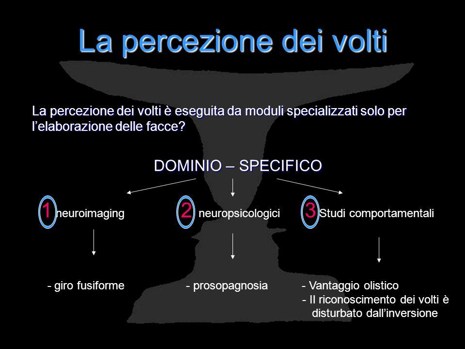 La percezione dei volti La percezione dei volti è eseguita da moduli specializzati solo per lelaborazione delle facce? DOMINIO – SPECIFICO 1 neuroimag
