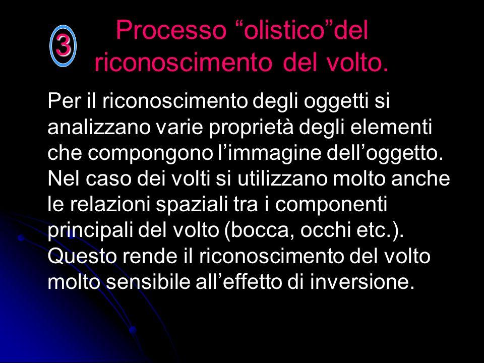 Processo olisticodel riconoscimento del volto. Per il riconoscimento degli oggetti si analizzano varie proprietà degli elementi che compongono limmagi