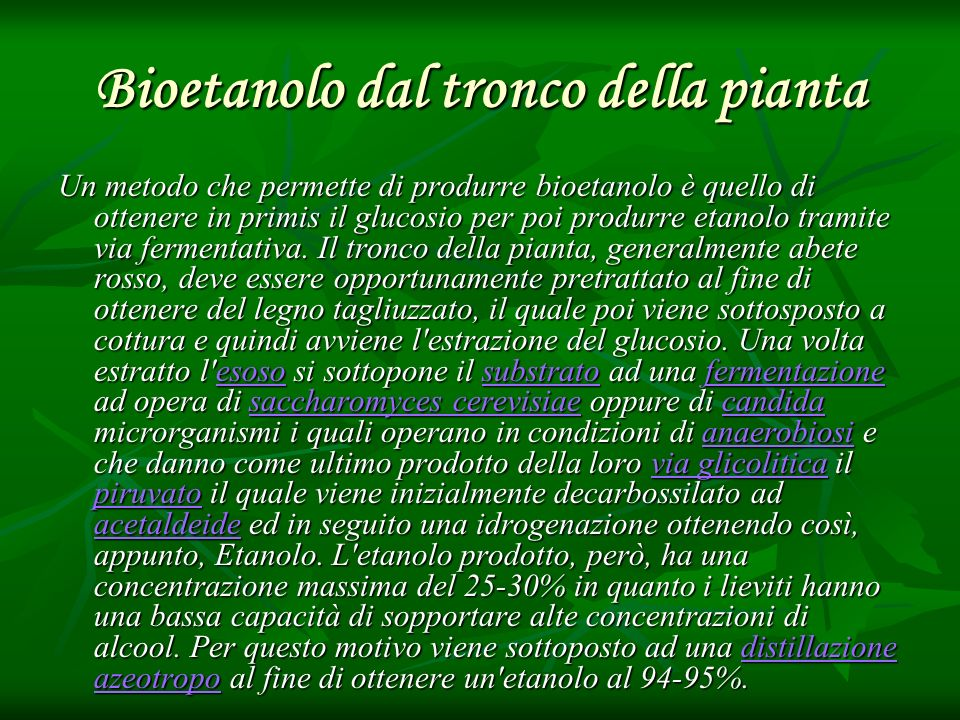 Bioetanolo dal tronco della pianta Un metodo che permette di produrre bioetanolo è quello di ottenere in primis il glucosio per poi produrre etanolo t