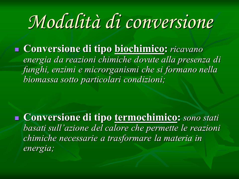 Modalità di conversione Conversione di tipo biochimico: ricavano energia da reazioni chimiche dovute alla presenza di funghi, enzimi e microrganismi c