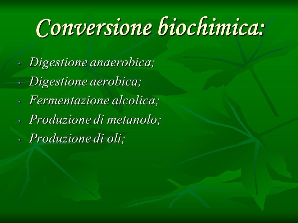 Conversione biochimica: Digestione anaerobica; Digestione anaerobica; Digestione aerobica; Digestione aerobica; Fermentazione alcolica; Fermentazione
