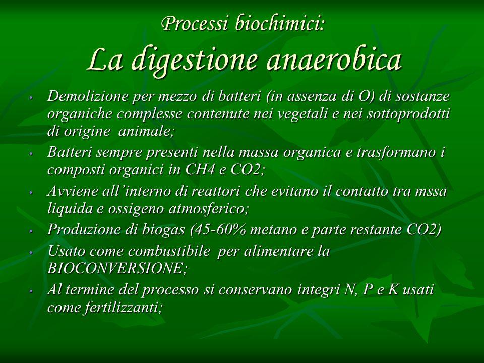 Processi biochimici: La digestione anaerobica Demolizione per mezzo di batteri (in assenza di O) di sostanze organiche complesse contenute nei vegetal