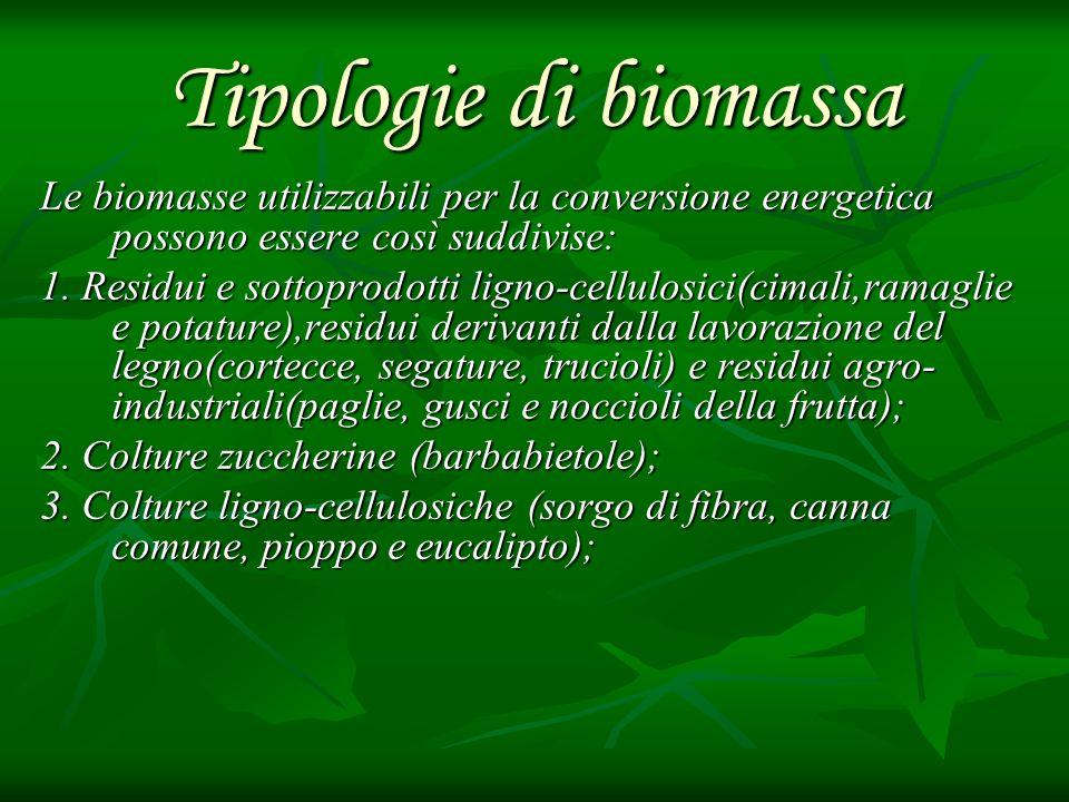 Tipologie di biomassa Le biomasse utilizzabili per la conversione energetica possono essere così suddivise: 1. Residui e sottoprodotti ligno-cellulosi