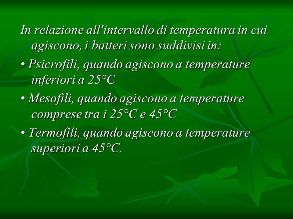 In relazione all'intervallo di temperatura in cui agiscono, i batteri sono suddivisi in: Psicrofili, quando agiscono a temperature inferiori a 25°C Ps