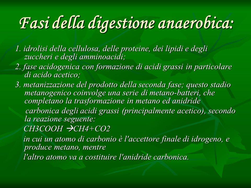 Fasi della digestione anaerobica: 1. idrolisi della cellulosa, delle proteine, dei lipidi e degli zuccheri e degli amminoacidi; 2. fase acidogenica co