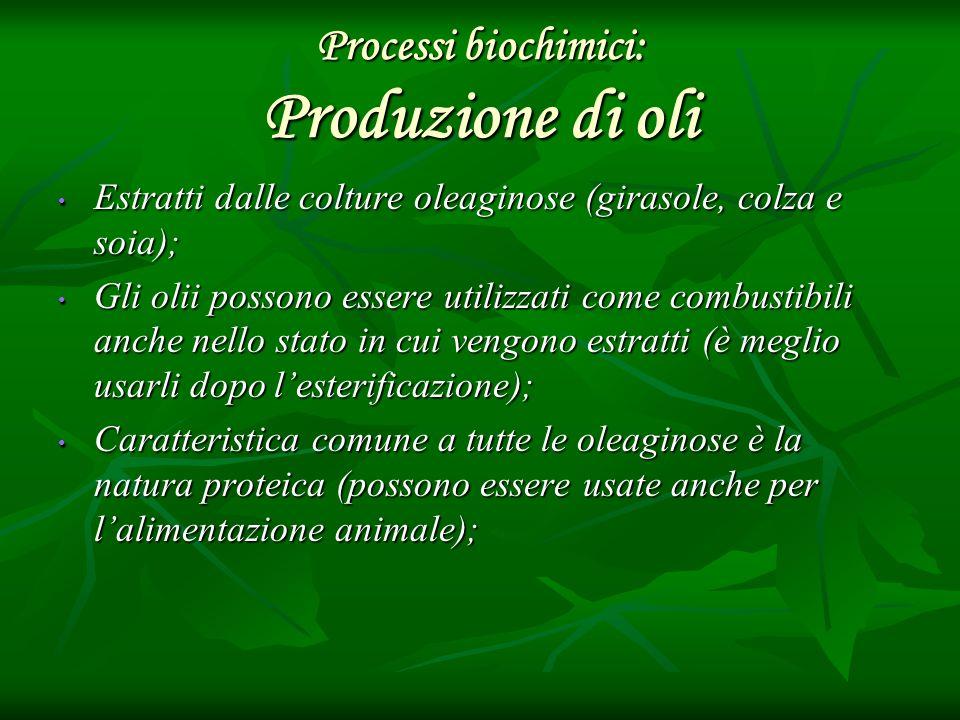 Processi biochimici: Produzione di oli Estratti dalle colture oleaginose (girasole, colza e soia); Estratti dalle colture oleaginose (girasole, colza