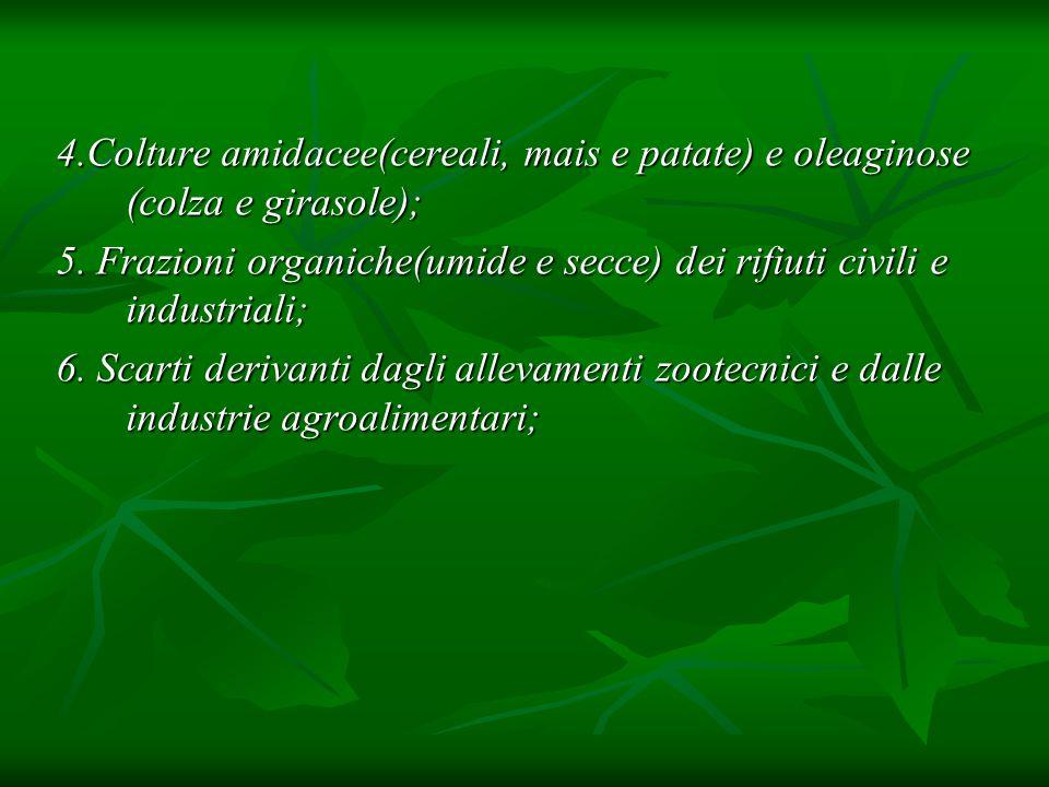 Processi termochimici: SRF(Short Rotation Forestry) si intende la coltivazione di specie arboree con alto contenuto energetico e un breve turno di raccolta (2÷5 anni); si intende la coltivazione di specie arboree con alto contenuto energetico e un breve turno di raccolta (2÷5 anni); Le varie fasi del ciclo di produzione, necessitano comunque ancora di sperimentazione su scala significative nelle diverse situazioni ambientali italiane, tenendo conto che tutte le specie considerate hanno diverse tecniche di propagazione ed esigenze climatiche, idriche, etc; Le varie fasi del ciclo di produzione, necessitano comunque ancora di sperimentazione su scala significative nelle diverse situazioni ambientali italiane, tenendo conto che tutte le specie considerate hanno diverse tecniche di propagazione ed esigenze climatiche, idriche, etc; la coltivazione di specie arboree è tanto più redditizia quanto più i cicli di crescita sono brevi; la coltivazione di specie arboree è tanto più redditizia quanto più i cicli di crescita sono brevi;
