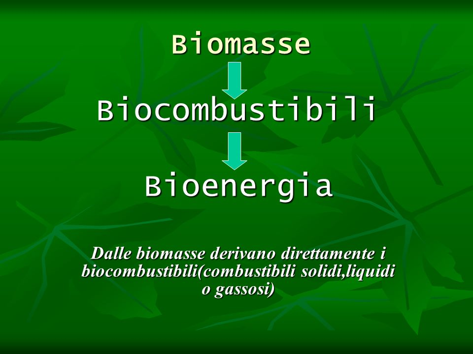Biomasse Biomasse BiocombustibiliBioenergia Dalle biomasse derivano direttamente i biocombustibili(combustibili solidi,liquidi o gassosi)