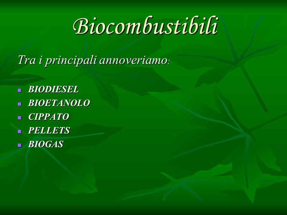 BIODIESEL Il biodiesel è fonte di energia rinnovabile ottenuta dagli oli vegetali di colza e girasole,con proprietà e prestazioni simili a quelle del gasolio minerale.