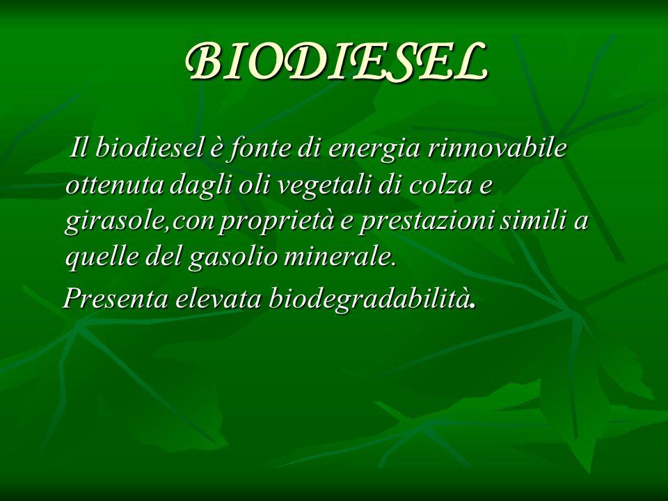 BIODIESEL Il biodiesel è fonte di energia rinnovabile ottenuta dagli oli vegetali di colza e girasole,con proprietà e prestazioni simili a quelle del