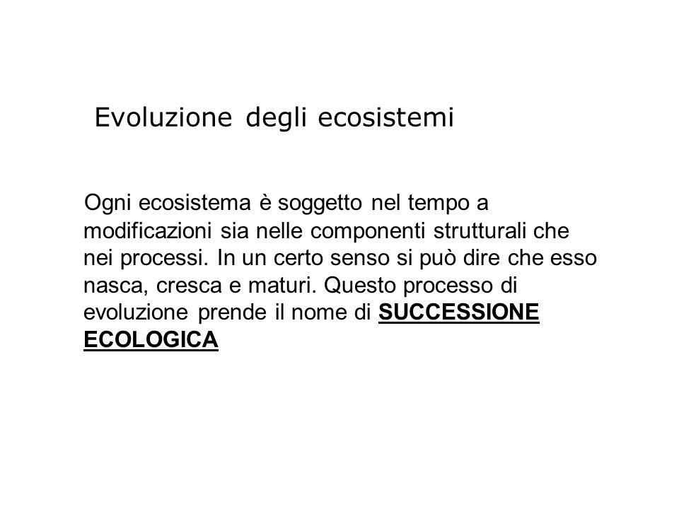 Evoluzione degli ecosistemi Ogni ecosistema è soggetto nel tempo a modificazioni sia nelle componenti strutturali che nei processi. In un certo senso
