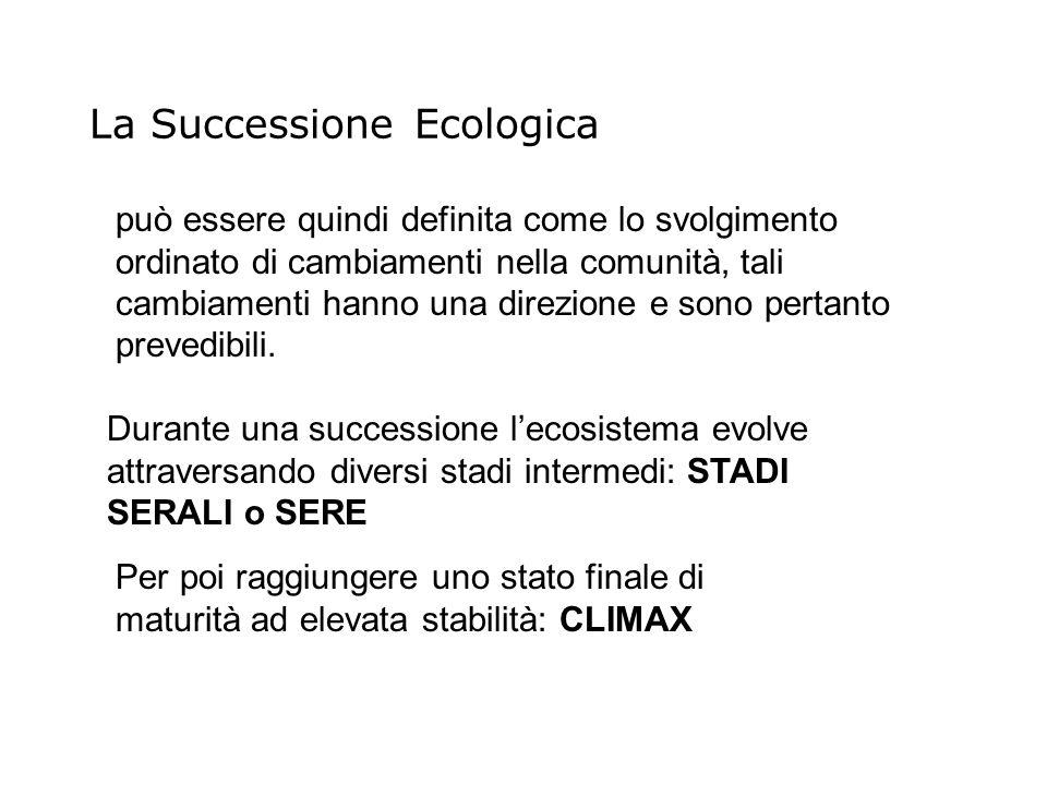 Durante una successione lecosistema evolve attraversando diversi stadi intermedi: STADI SERALI o SERE Per poi raggiungere uno stato finale di maturità