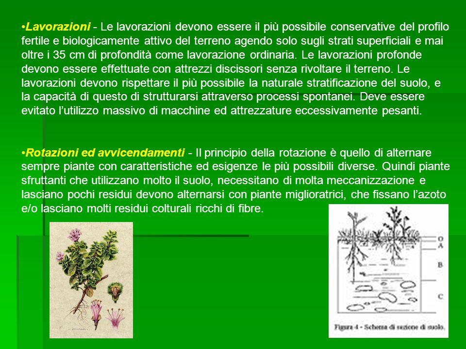 Lavorazioni - Le lavorazioni devono essere il più possibile conservative del profilo fertile e biologicamente attivo del terreno agendo solo sugli str