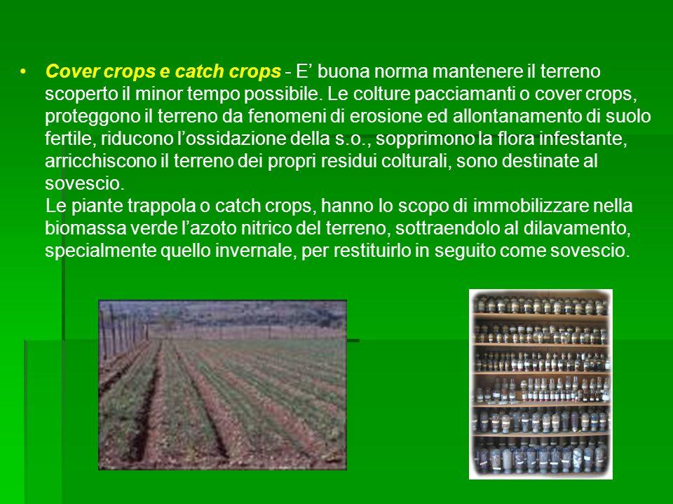 Cover crops e catch crops - E buona norma mantenere il terreno scoperto il minor tempo possibile. Le colture pacciamanti o cover crops, proteggono il