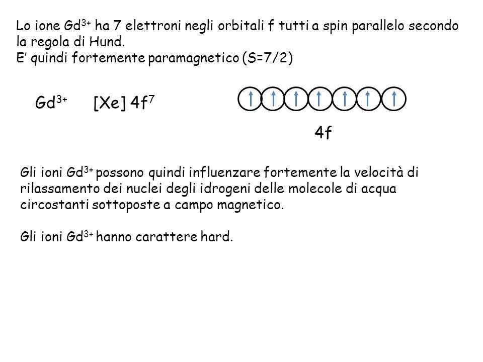 Lo ione Gd 3+ ha 7 elettroni negli orbitali f tutti a spin parallelo secondo la regola di Hund.