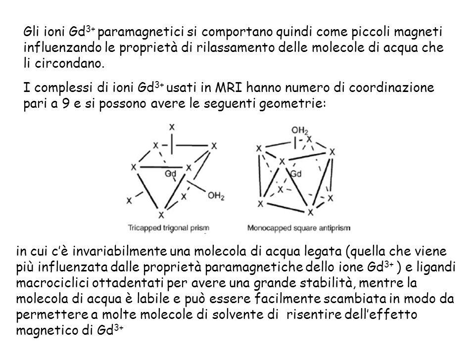 Gli ioni Gd 3+ paramagnetici si comportano quindi come piccoli magneti influenzando le proprietà di rilassamento delle molecole di acqua che li circondano.