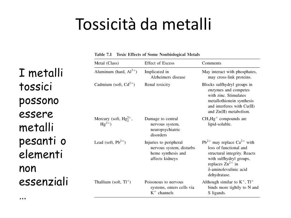Tossicità da metalli I metalli tossici possono essere metalli pesanti o elementi non essenziali …