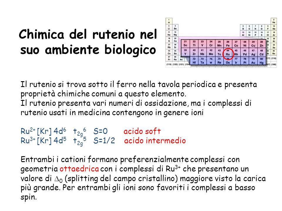 Chimica del rutenio nel suo ambiente biologico Il rutenio si trova sotto il ferro nella tavola periodica e presenta proprietà chimiche comuni a questo elemento.