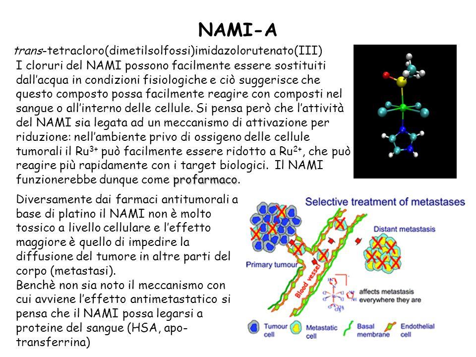 NAMI-A trans-tetracloro(dimetilsolfossi)imidazolorutenato(III) profarmaco I cloruri del NAMI possono facilmente essere sostituiti dallacqua in condizioni fisiologiche e ciò suggerisce che questo composto possa facilmente reagire con composti nel sangue o allinterno delle cellule.