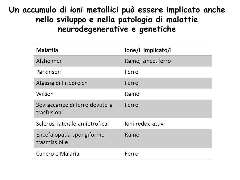MalattiaIone/i implicato/i AlzheimerRame, zinco, ferro ParkinsonFerro Atassia di FriedreichFerro WilsonRame Sovraccarico di ferro dovuto a trasfusioni Ferro Sclerosi laterale amiotroficaIoni redox-attivi Encefalopatia spongiforme trasmissibile Rame Cancro e MalariaFerro Un accumulo di ioni metallici può essere implicato anche nello sviluppo e nella patologia di malattie neurodegenerative e genetiche