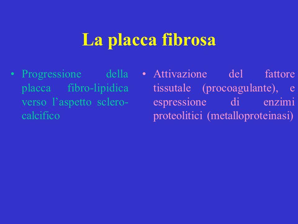 La placca fibrosa Progressione della placca fibro-lipidica verso laspetto sclero- calcifico Attivazione del fattore tissutale (procoagulante), e espre