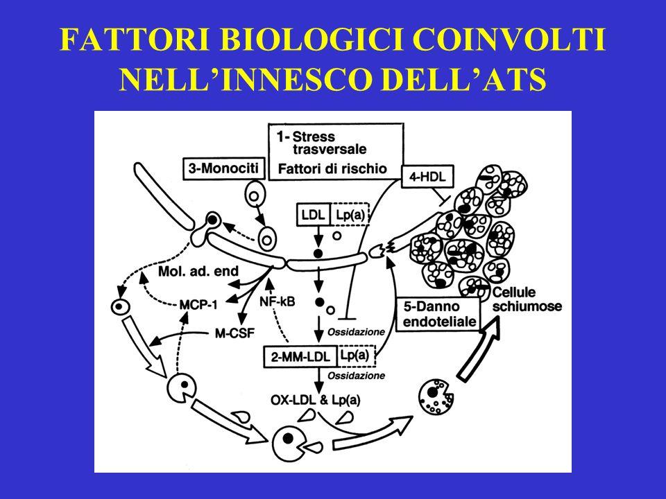 FATTORI BIOLOGICI COINVOLTI NELLINNESCO DELLATS