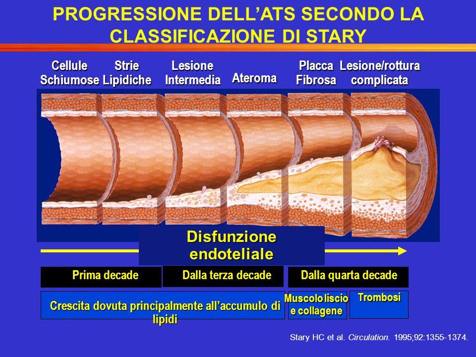 CelluleSchiumoseStrieLipidicheLesioneIntermedia Ateroma PlaccaFibrosaLesione/rotturacomplicata Disfunzione endoteliale Muscolo liscio e collagene Prim