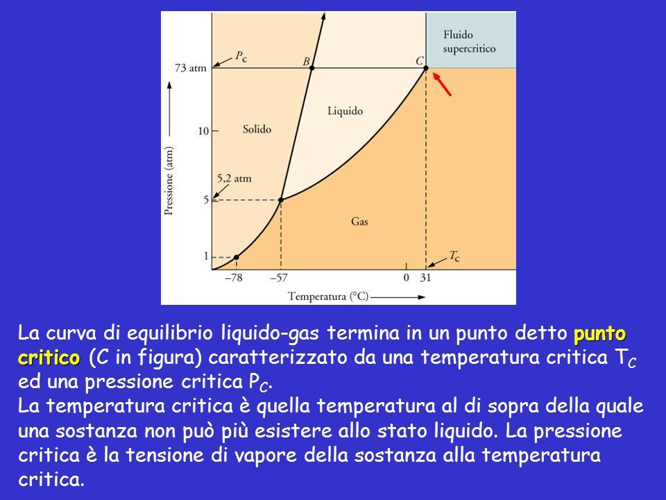 punto critico La curva di equilibrio liquido-gas termina in un punto detto punto critico (C in figura) caratterizzato da una temperatura critica T C e