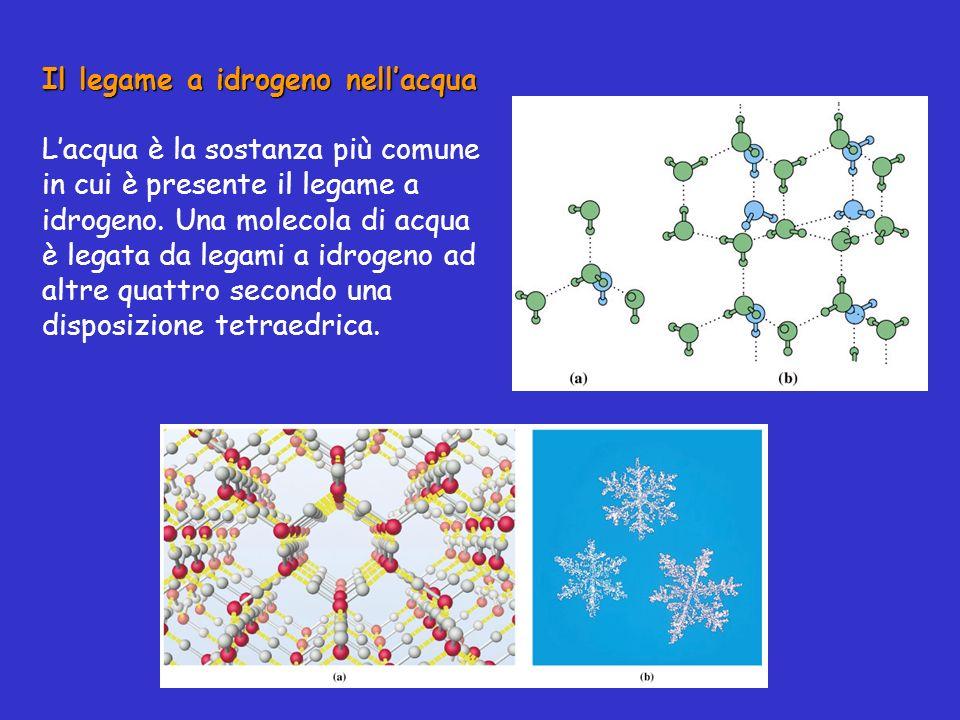 Il legame a idrogeno nellacqua Lacqua è la sostanza più comune in cui è presente il legame a idrogeno. Una molecola di acqua è legata da legami a idro
