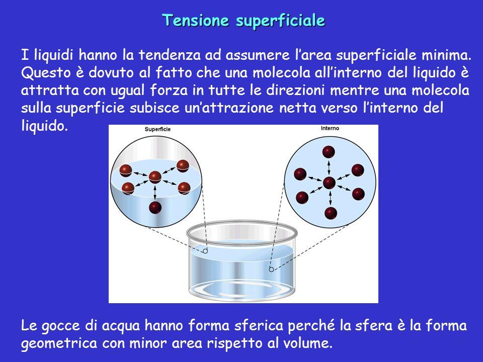 Tensione superficiale I liquidi hanno la tendenza ad assumere larea superficiale minima. Questo è dovuto al fatto che una molecola allinterno del liqu