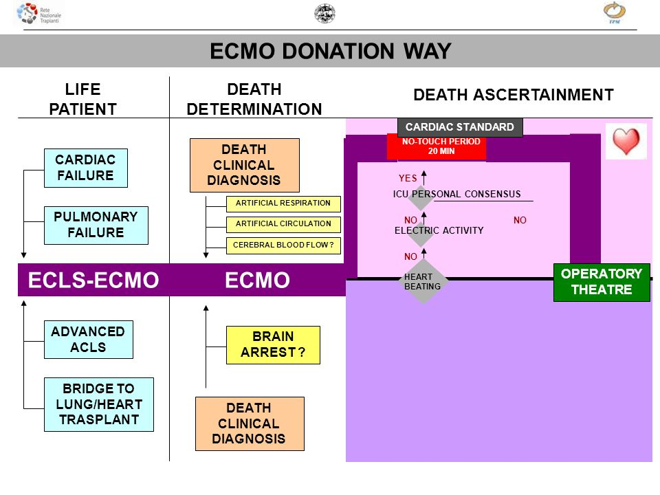 LIFE PATIENT DEATH DETERMINATION DEATH ASCERTAINMENT CARDIAC FAILURE PULMONARY FAILURE ADVANCED ACLS BRIDGE TO LUNG/HEART TRASPLANT DEATH CLINICAL DIA