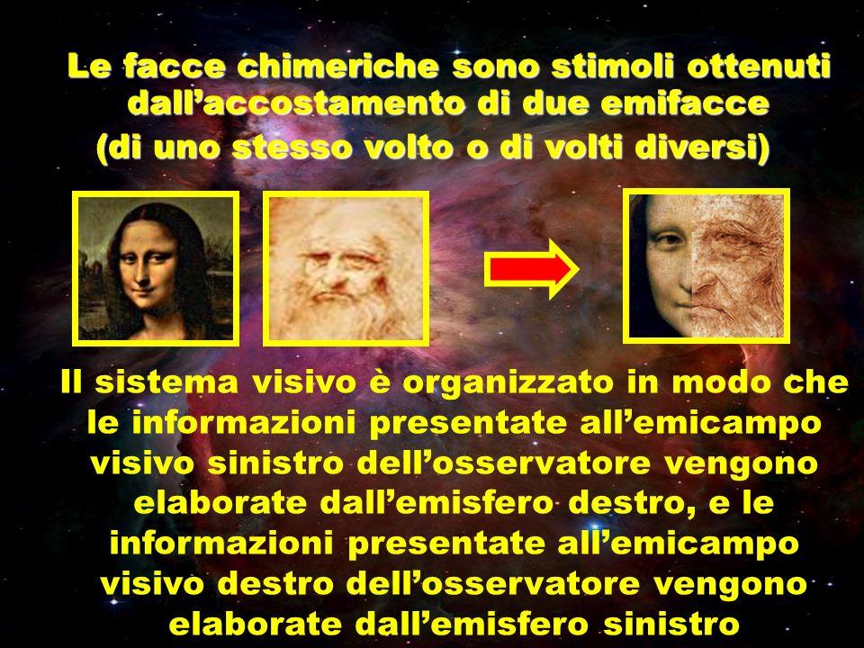 Il sistema visivo è organizzato in modo che le informazioni presentate allemicampo visivo sinistro dellosservatore vengono elaborate dallemisfero dest