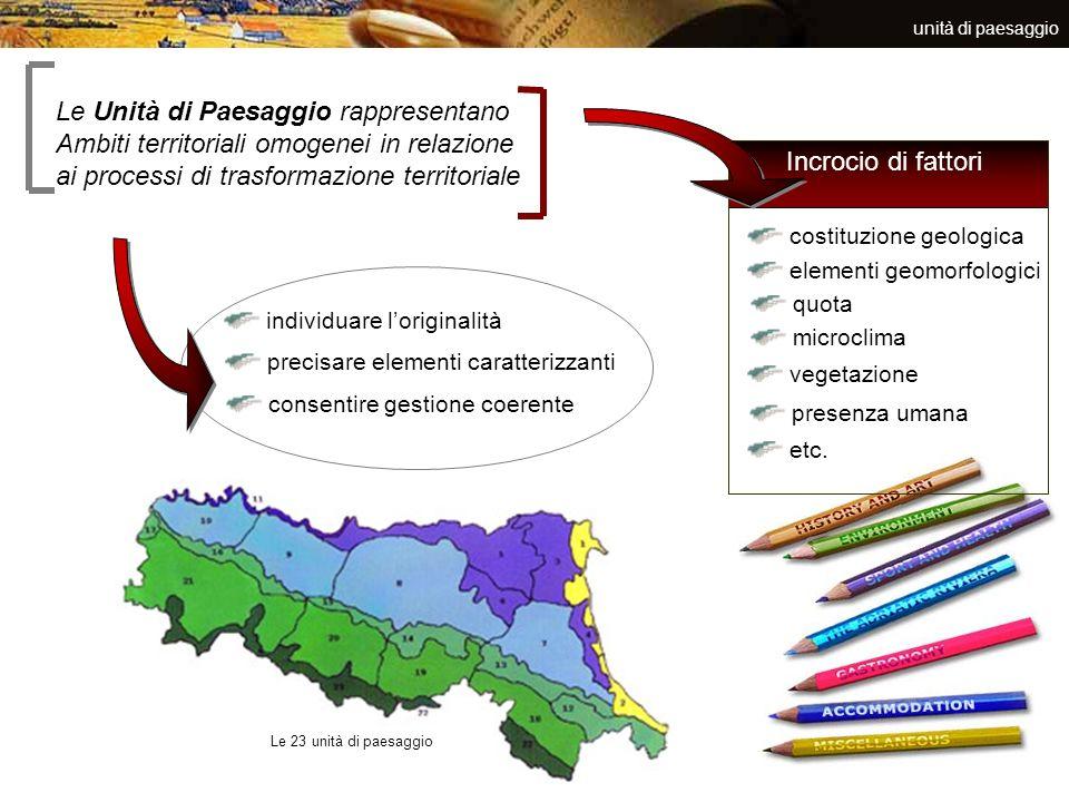 unità di paesaggio Le Unità di Paesaggio rappresentano Ambiti territoriali omogenei in relazione ai processi di trasformazione territoriale individuar