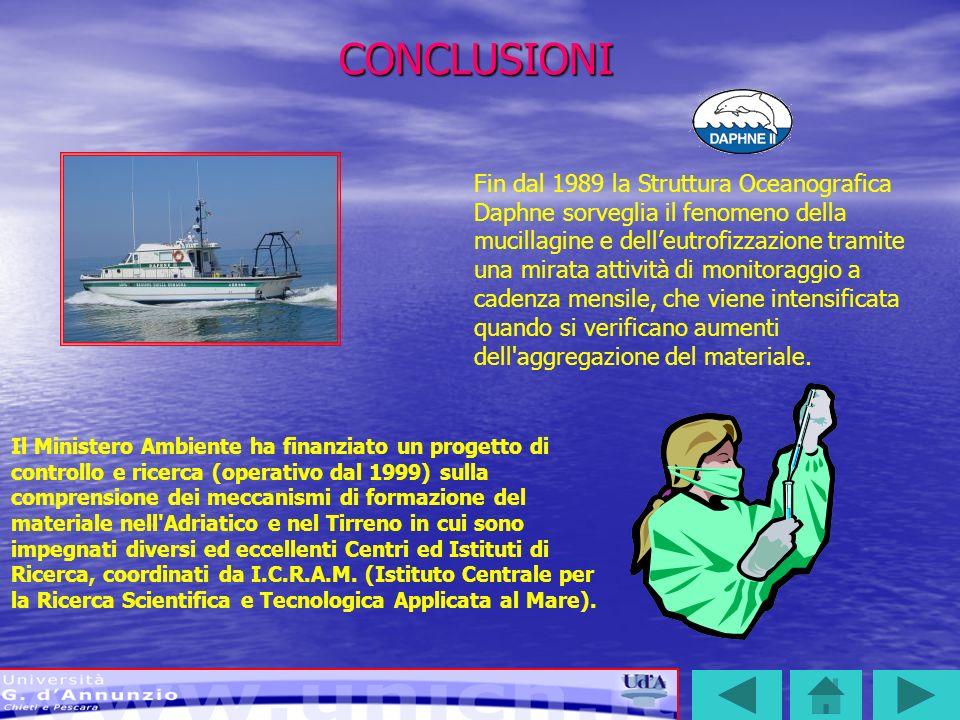 CONCLUSIONI Il Ministero Ambiente ha finanziato un progetto di controllo e ricerca (operativo dal 1999) sulla comprensione dei meccanismi di formazion