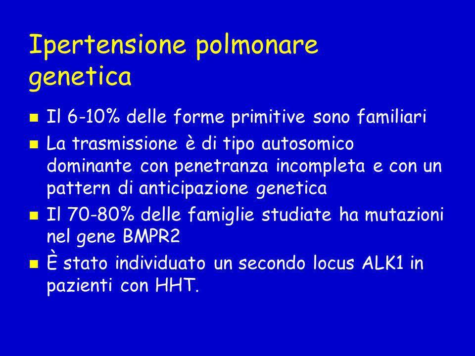 Ipertensione polmonare genetica Il 6-10% delle forme primitive sono familiari La trasmissione è di tipo autosomico dominante con penetranza incompleta e con un pattern di anticipazione genetica Il 70-80% delle famiglie studiate ha mutazioni nel gene BMPR2 È stato individuato un secondo locus ALK1 in pazienti con HHT.