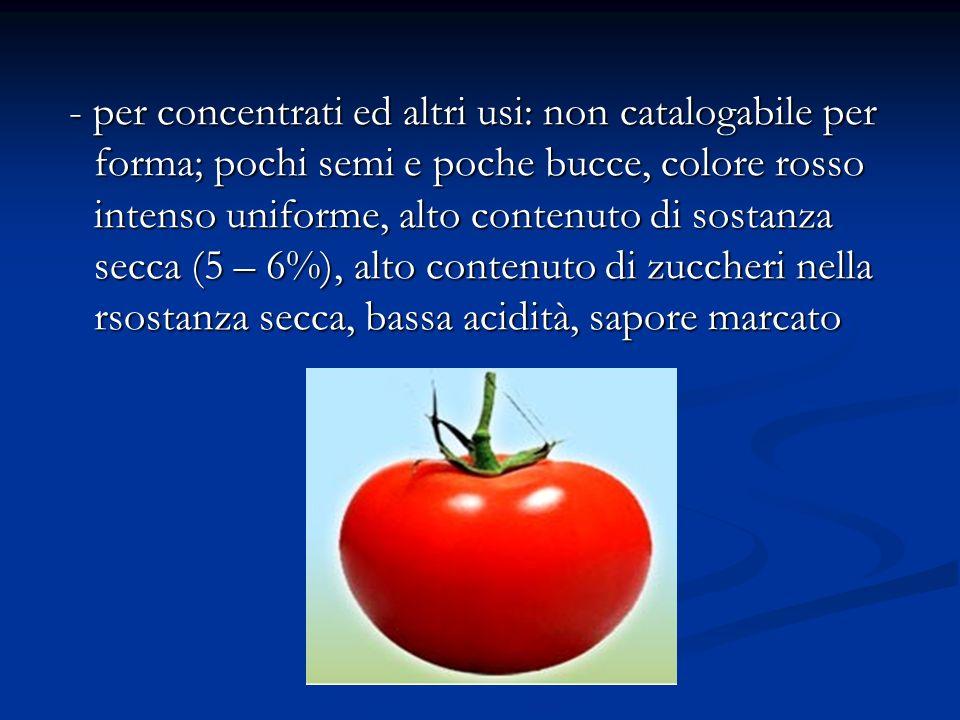 - per concentrati ed altri usi: non catalogabile per forma; pochi semi e poche bucce, colore rosso intenso uniforme, alto contenuto di sostanza secca