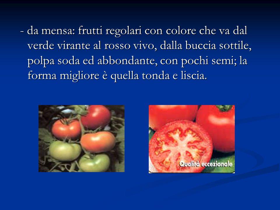 - da mensa: frutti regolari con colore che va dal verde virante al rosso vivo, dalla buccia sottile, polpa soda ed abbondante, con pochi semi; la form