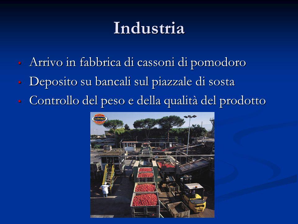 Industria Arrivo in fabbrica di cassoni di pomodoro Arrivo in fabbrica di cassoni di pomodoro Deposito su bancali sul piazzale di sosta Deposito su ba