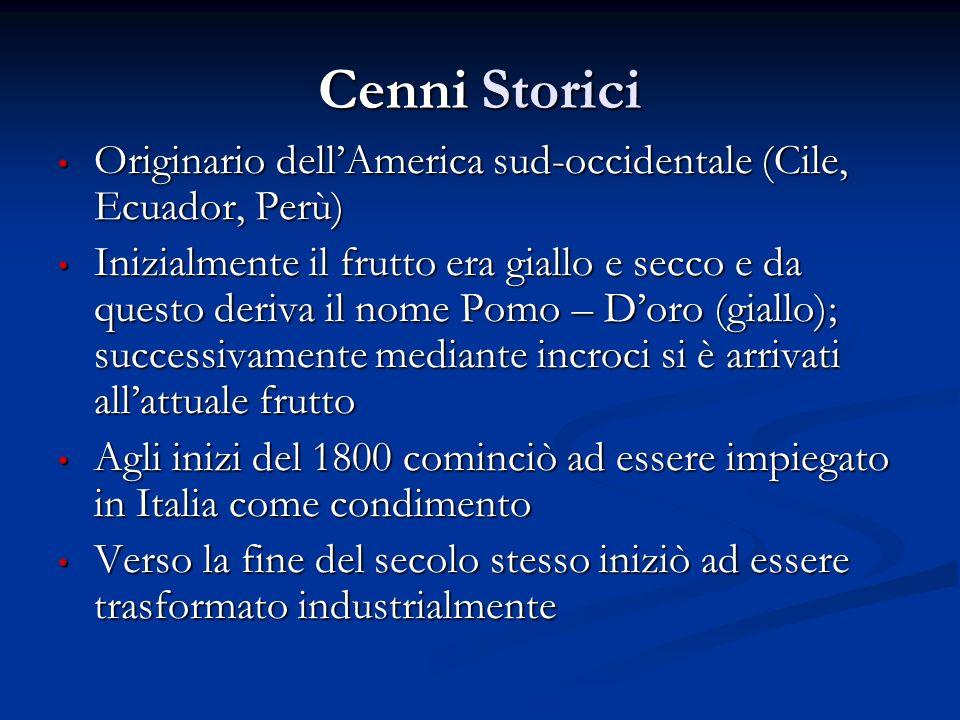 Cenni Storici Originario dellAmerica sud-occidentale (Cile, Ecuador, Perù) Originario dellAmerica sud-occidentale (Cile, Ecuador, Perù) Inizialmente i