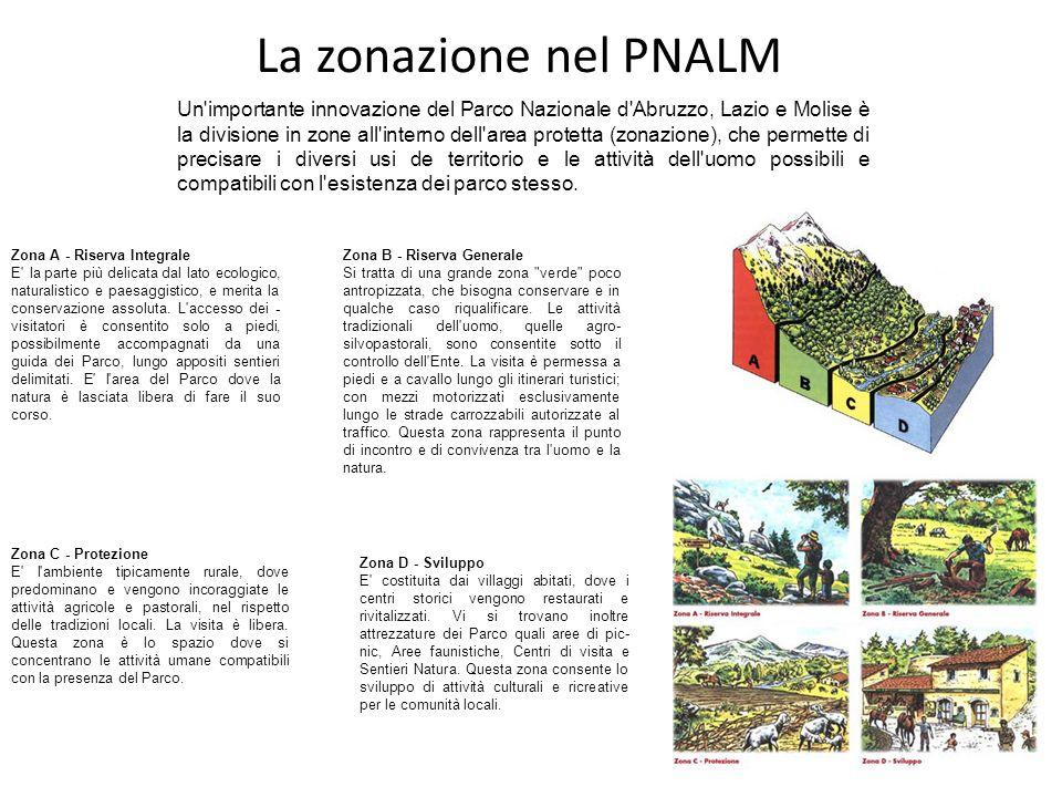 La zonazione nel PNALM Un importante innovazione del Parco Nazionale d Abruzzo, Lazio e Molise è la divisione in zone all interno dell area protetta (zonazione), che permette di precisare i diversi usi de territorio e le attività dell uomo possibili e compatibili con l esistenza dei parco stesso.