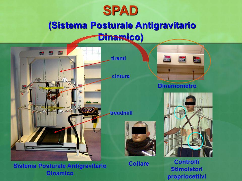 SPAD (Sistema Posturale Antigravitario Dinamico) Sistema Posturale Antigravitario Dinamico Controlli Stimolatori propriocettivi Dinamometro cintura ti