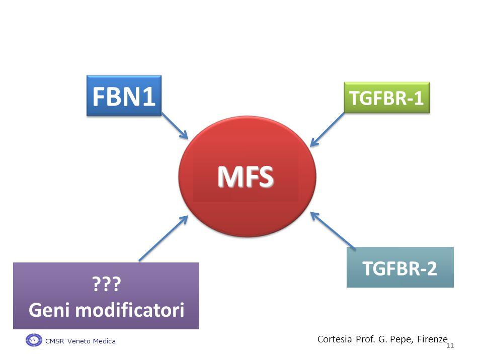 TGFBR-1 FBN1 MFS TGFBR-2 Geni modificatori Cortesia Prof. G. Pepe, Firenze CMSR Veneto Medica 11