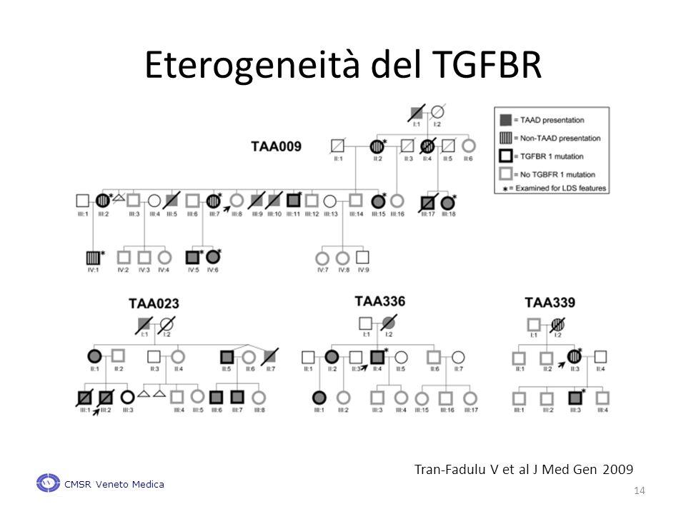 Tran-Fadulu V et al J Med Gen 2009 Eterogeneità del TGFBR CMSR Veneto Medica 14