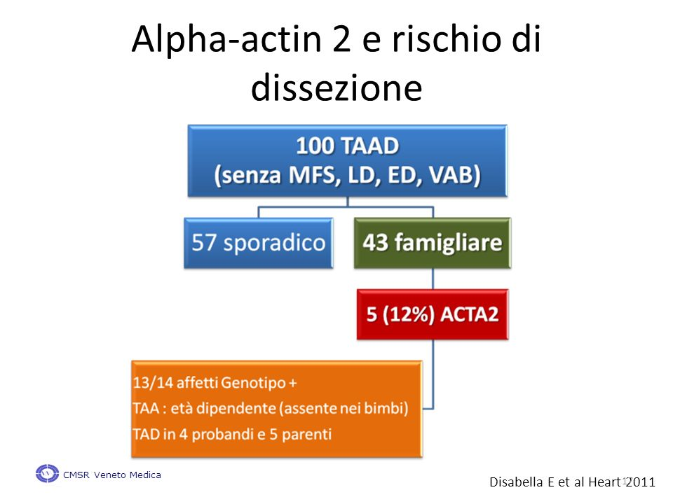 Alpha-actin 2 e rischio di dissezione Disabella E et al Heart 2011 CMSR Veneto Medica 17