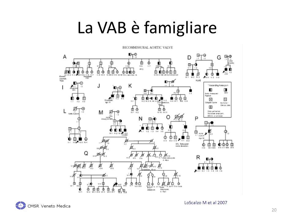 La VAB è famigliare 20 CMSR Veneto Medica LoScalzo M et al 2007