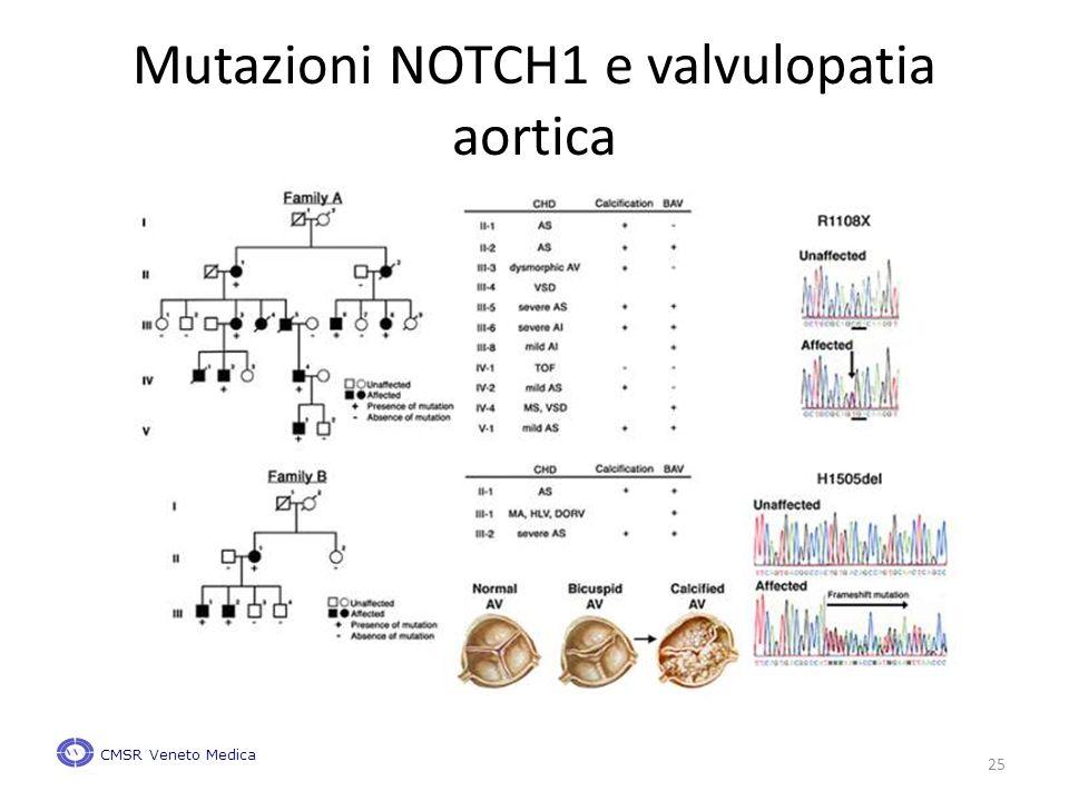 Mutazioni NOTCH1 e valvulopatia aortica CMSR Veneto Medica 25